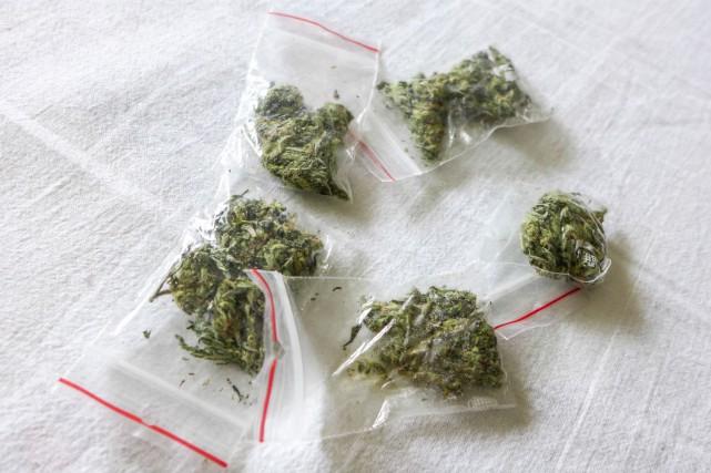 Du cannabis.... (123RF/Jaroslav Moravcik)