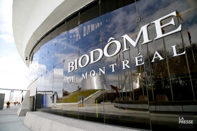 LeBiodôme de Montréal... (PHOTO DAVID BOILY, ARCHIVES LA PRESSE)