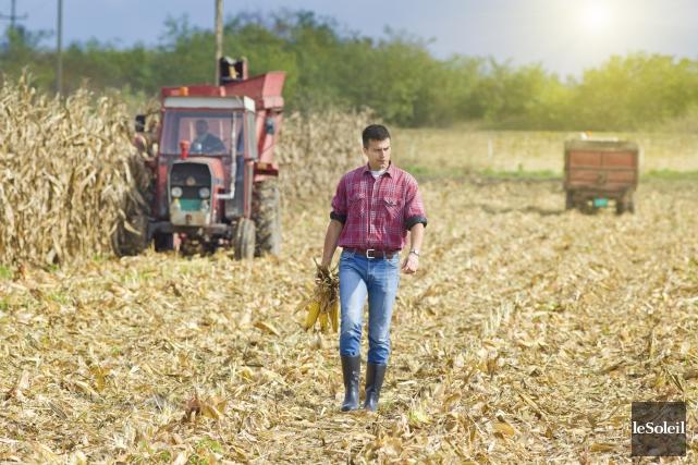 Des fermiers québécois qui adhèrent au programme ASRA... (Photothèque Le Soleil)