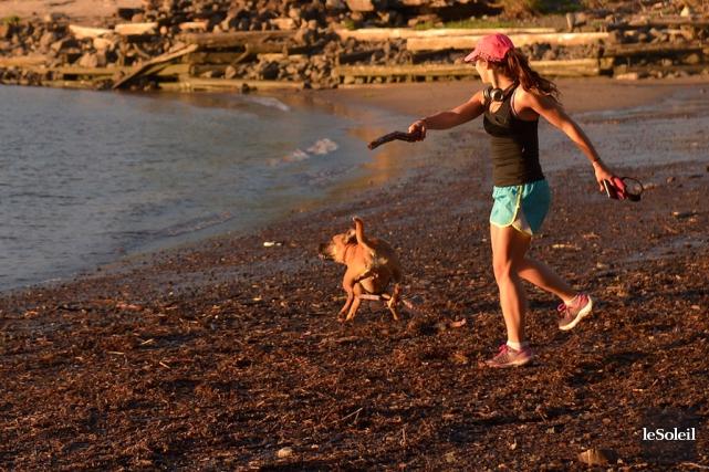 Une jeune femme fait courir son chien sur... (Le Soleil, Yan Doublet)