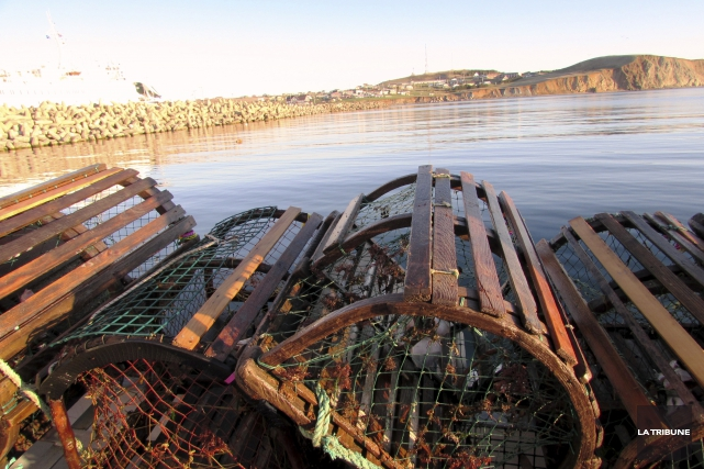 Chaque casier à homards pèse une centaine de... (La Tribune, Jonathan Custeau)