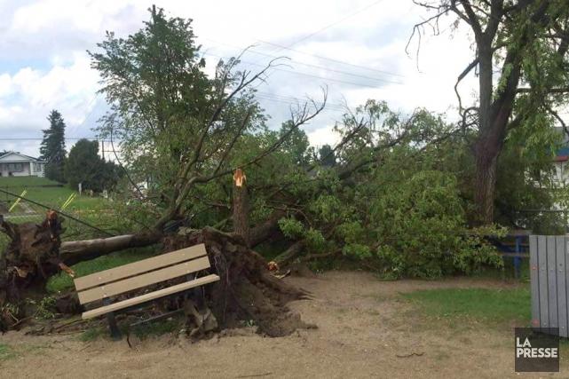 Des murs ont été endommagés; des arbres, déracinés;... (Facebook)