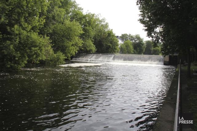 Des milliers de poissons ont été trouvés morts, jeudi soir, dans la rivière... (Photo d'archives)