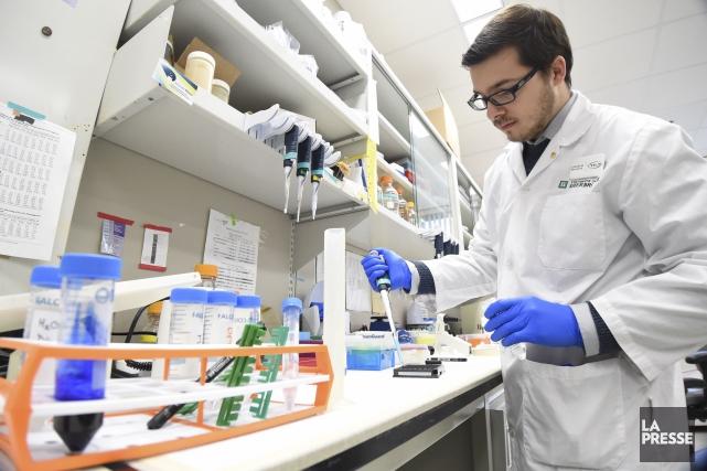La faculté de médecine de l'UdeS caresse un... (Spectre Média, Frédéric Côté)