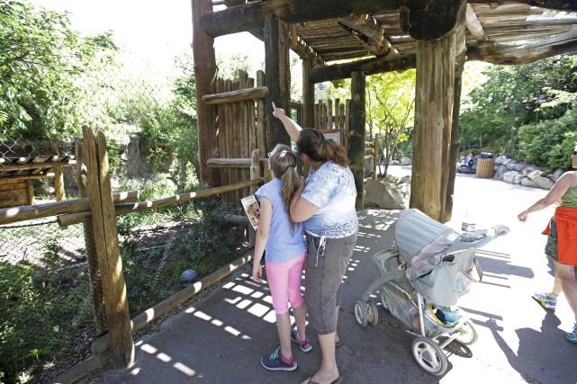Des visiteurs pointent l'endroit où le léopard a... (AP, Rick Bowmer)