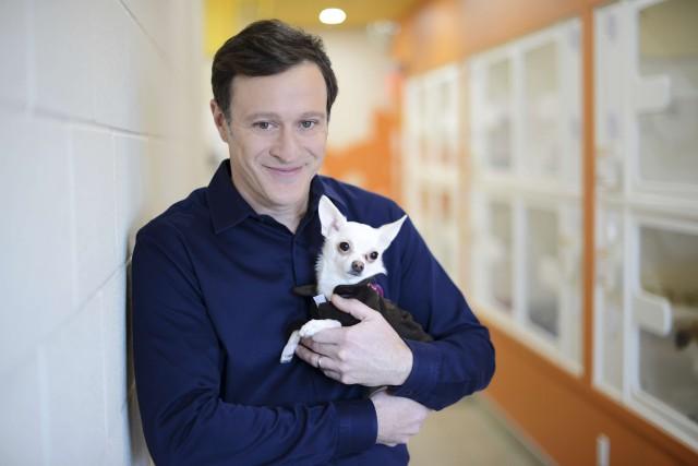 TVA tient un succès avec Refuge animal, la... (TVA)