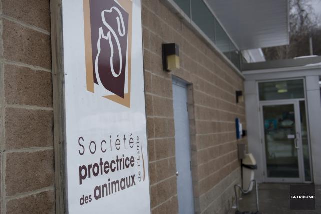 La Société protectrice des animaux (SPA) de l'Estrie... (Archives, La Tribune)