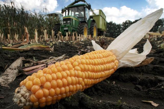 Mettez du maïs dans votre moteur. Nissan a... (Photo : AFP)