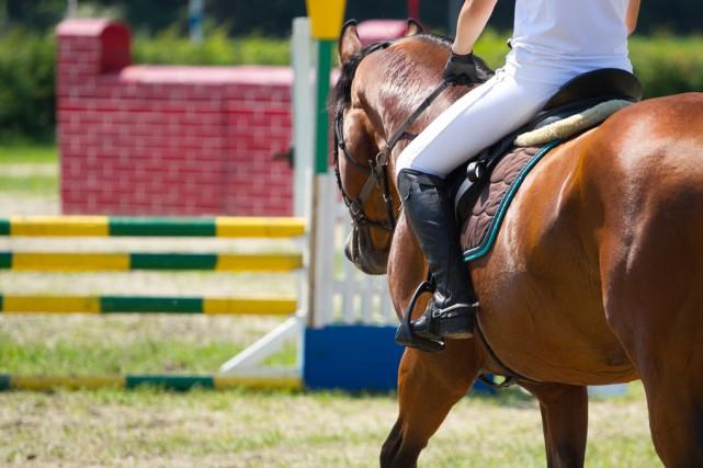 Les Jeux équestres mondiaux réuniront quelque 1200cavaliers provenant... (123RF)