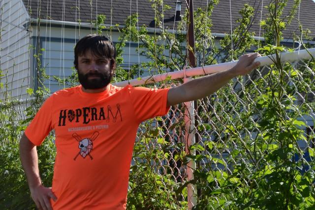 Une clôture de houblon : une idée écologique et originale tout droit sortie de... (Photo Claudie Laroche)