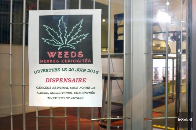 Il est écrit que le cannabis médicinal sera... (Le Soleil, Jean-Marie Villeneuve)