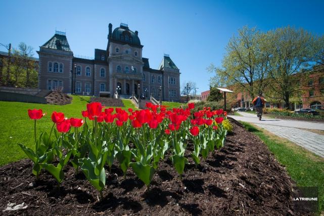 Il sera bientôt possible d'acheminer une plainte à la Ville de Sherbrooke en... (Archives La Tribune)