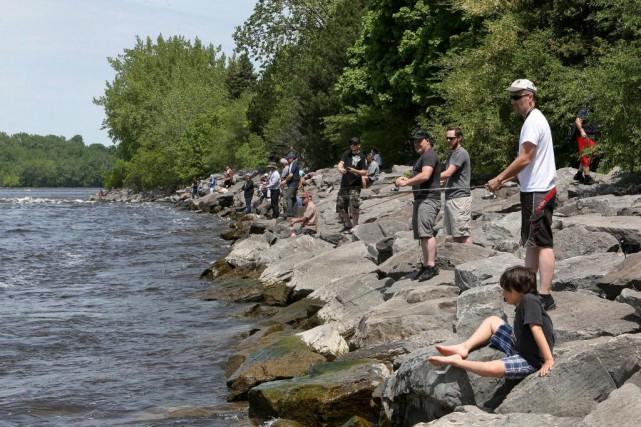 Au parc-nature de l'Île-de-la-Visitation, le secteur près du... (Photo Robert Skinner, La Presse)