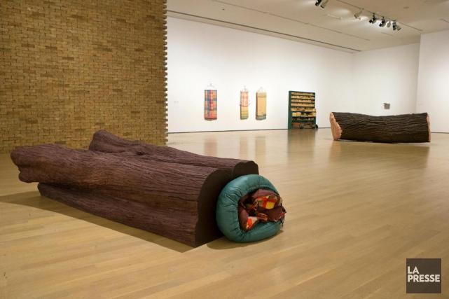 Le Musée d'art contemporain nous offre la plus... (PHOTO ROBERT SKINNER, LA PRESSE)