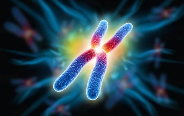 Une avancée scientifique sherbrookoise pourrait permettre le développement... (Photo fournie)