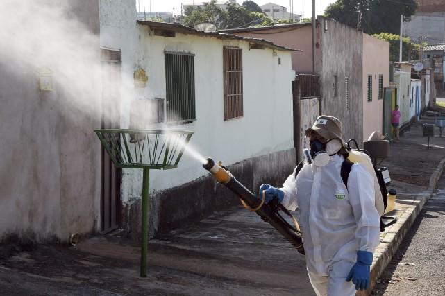 Le virus Zika qui sévit au Brésil a... (AFP, Evaristo Sa)