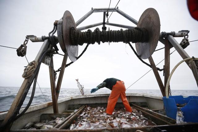 La pêche en eaux profondes ne représente qu'environ... (PHOTO Robert F. Bukaty, ACRHIVES AP)