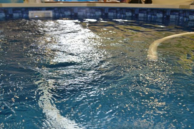 Pour la piscine et le spa des investissements pour une for Club piscine ottawa ontario