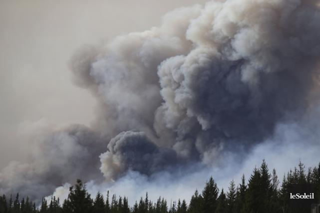 L'homme ayant dirigé la bataille contre «La Bête», l'incendie de forêt qui a... (Photothèque Le Soleil, AFP, Cole Burston)