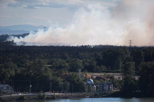 Environ 90% de la tourbière de Burns Bog, en banlieue de Vancouver, devrait se... (PHOTO Darryl Dyck, la presse canadienne)