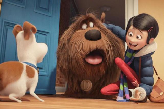 Max, Duke et Katie sont trois des nombreux... (PHOTO FOURNIE PAR UNIVERSAL PICTURES)