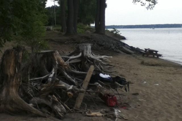 Certains arbres morts ornent les sentiers et constituent...