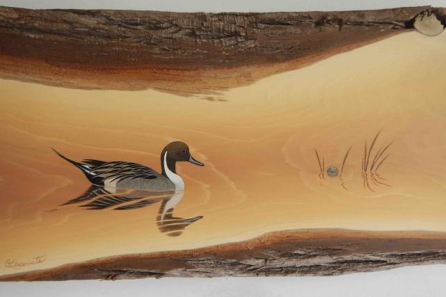 L'écorce brunâtre du cèdre forme les rives d'un... (Odette Lapointe)