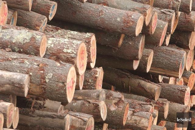 L'industrie forestière est responsable de 60 000 emplois... (Photothèque Le Soleil, Jean-Marie Villeneuve)