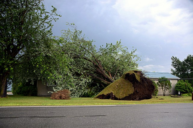 Un corridor de puissants vents a provoqué la fermeture de plusieurs routes,... (Photo collaboration spéciale Éric Beaupré)