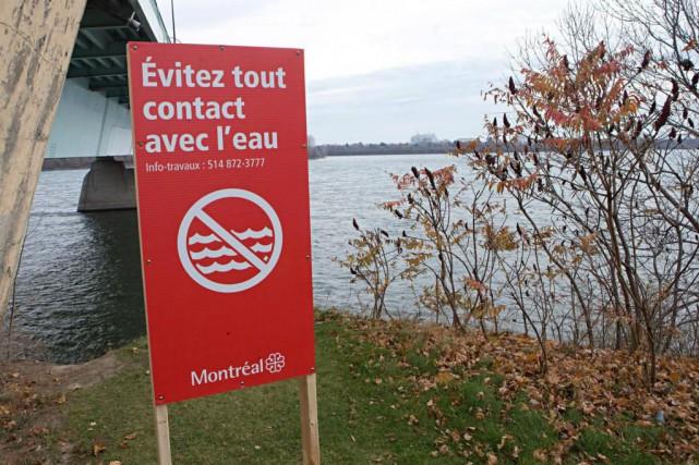 En novembre, la Ville de Montréal a procédé... (PhotoPatrick SANFAÇON, La Presse)