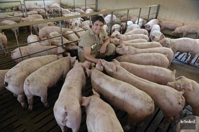 David Boissonneault, président de la fédération Les éleveurs... (Le Soleil, Patrice Laroche)