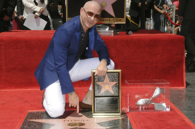 Pitbull a reçu la 2584e étoile du Hollywood... (AP, Bob Freeman)