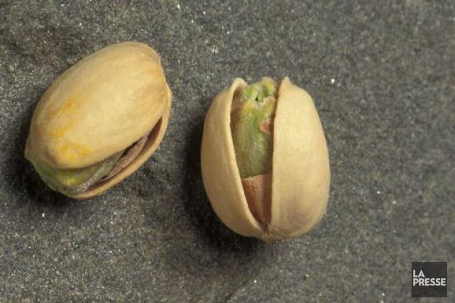 L'Afghanistan s'enorgueillit de produire les meilleures pistaches du... (Photothèque La Presse)