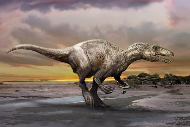 Le Musuraptor a des caractéristiques faciales distinctes jamais... (PHOTO REUTERS)