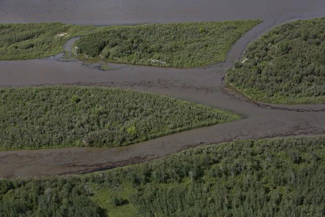 Une nappe de pétrole a été aperçue tôt... (La Presse Canadienne, Jason Franson)