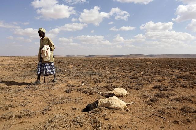 Des millions d'enfants africains vont souffrir de la faim et des maladies... (Photo Feisal Omar, Reuters)