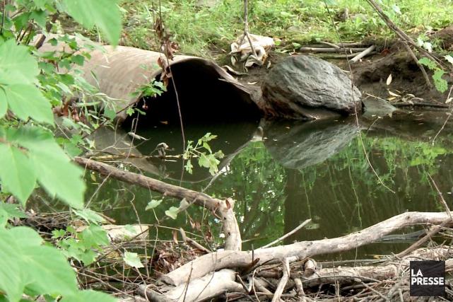 Le ministère du Développement durable, de l'Environnement et de la Lutte contre... (Archives La Presse)