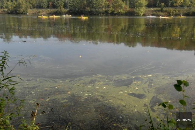 Onze plans d'eau en Estrie ont été touchés... (Archives, La Tribune)