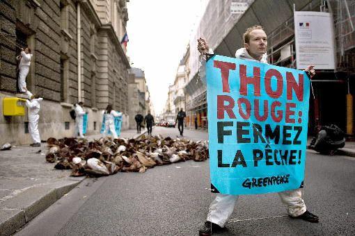 Parce que ces groupes écologistes s'opposent à des... (Archives AFP)