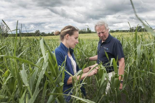 Le président-directeur général de la Financière agricole, Robert...