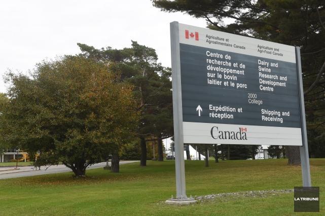 Un nouveau bioréacteur au coût de 1,5 M $ sera installé au Centre de recherche... (Archives La Tribune, René Marquis)