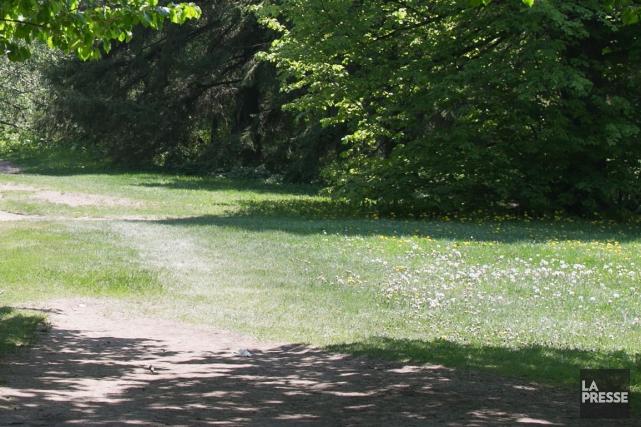 La police a été appelée au parc Raymond-Préfontaine, jeudi matin, où des... (PHOTO ARCHIVES LA PRESSE)