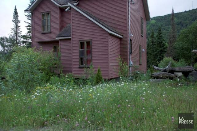 Fleurs des champs et petits arbres composent l'aménagement... (Fournie par Mireille Bonin)