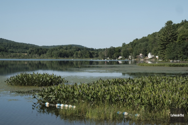 Le lac Bromont est l'endroit idéal pour naviguer... (Alain Dion, La Voix de l'Est)