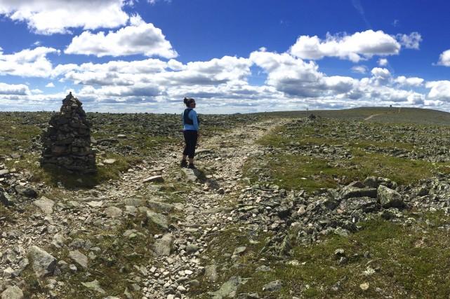 Au-dessus de la limite forestière, le plateau sommital... (Collaboration spéciale Jean-Sébastien Massicotte)
