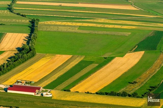 De nombreux terrains sont aujourd'hui visés par des... (123RF, Oliver Sved')