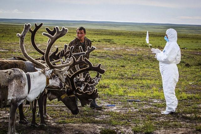 À Yamal, péninsule peuplée surtout d'éleveurs nomades de... (AFP)