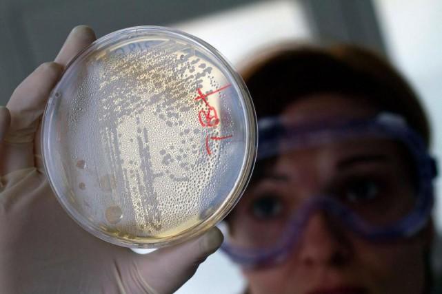 La surutilisation des antibiotiques pose problème parce qu'elle... (ARCHIVES REUTERS)