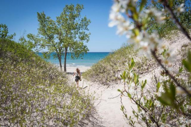 Le parc provincial des Sandbanks attire beaucoup de... (PHOTO OLIVIER PONTBRIAND, ARCHIVES LA PRESSE)