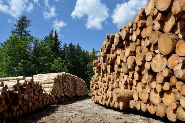 Si aucun accord sur le bois d'oeuvre n'est... (123RF,Alexander Stulov)
